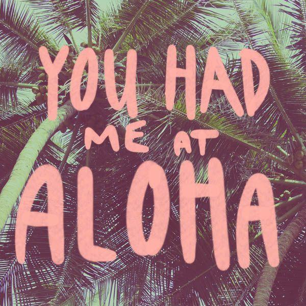 Aloooohhhhha! #youhadmeataloha #tropicalvibes #beachvibes #beachlife #tropicalli... Aloooohhhhha! <a class=