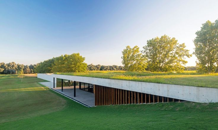 Beautiful stable grows wild grasses on the roof for horses to eat
