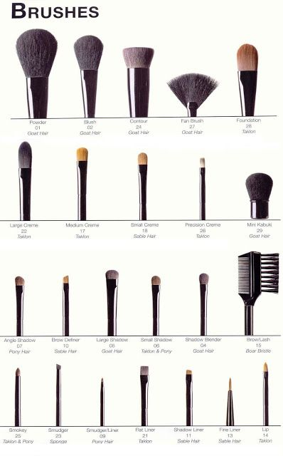 What makeup brushes are for what