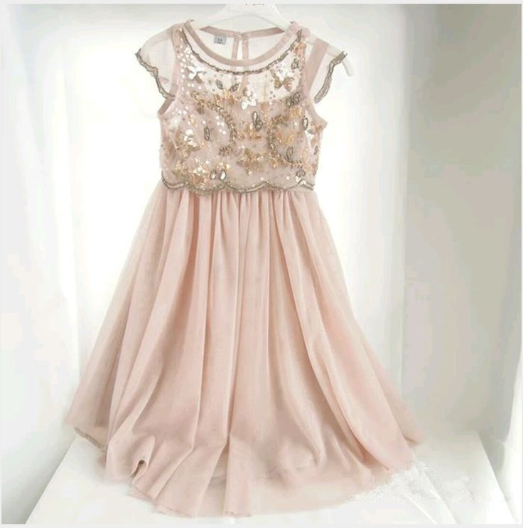 Beautifully Embroided  Elegant Blush Pink chiffon Dress