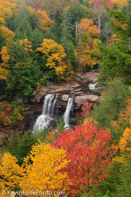 Blackwater Falls Gentle Trail Overlook - Blackwater Falls State Park - West Virginia | Kevin Funk Photography
