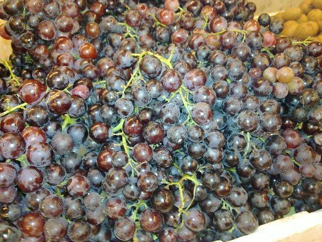 Según un estudio realizado recientemente en la India, una sustancia presente en las semillas de uva tendría el mismo efecto que la metmorfina a la hora de combatir la diabetes del tipo 2. Entérate más en este artículo.