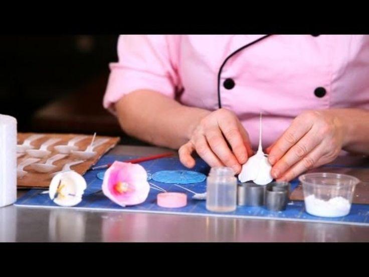 how to make gumpaste tulips video