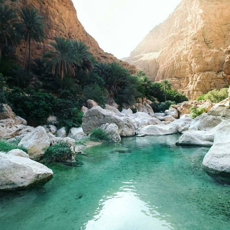 Wadi Shab, Oman Ahh what bliss! So hot in Sydney right now! Photo by @jyetylr - check him out he's got some amazing pics! #gsdiamonds #theqvb #sydney #australia #diamond #diamonds #jewellery #engagementring #ring #jewelry #engagement #diamondring #gold #rosegold #whitegold #yellowgold #luxe #luxury #accessories #style #ontrend #trend #love #wedding #weddings #smile #beautiful #bride #beauty