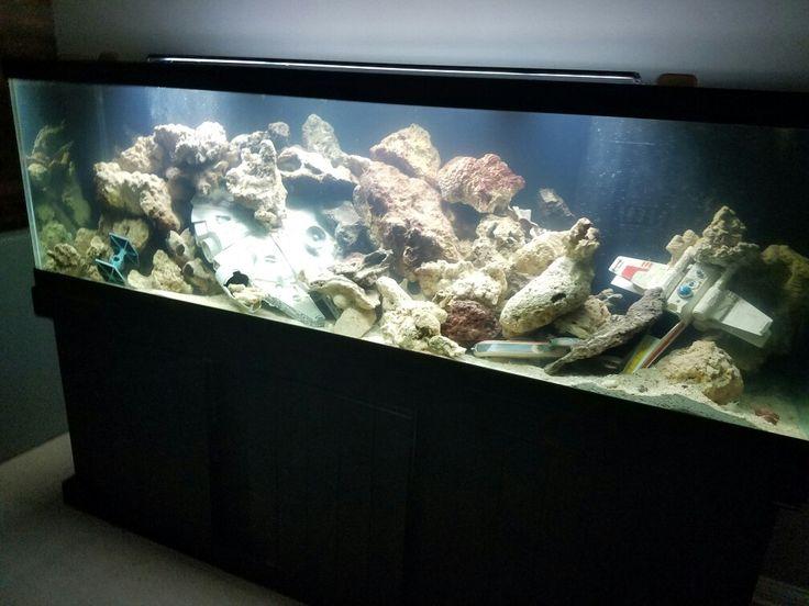 16 best fish tank ideas images on pinterest fish for Star wars fish tank decor