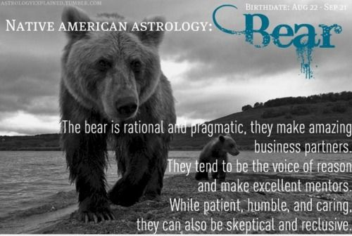 The Bear is rational and pragmatic.  They make amazing business partners.  They tend to be the voice of reason and make excellent mentors.  While patient, humble and caring, they can also be skeptical and reclusive.