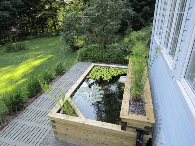 1000 images about above ground ponds on pinterest for Patio koi pond