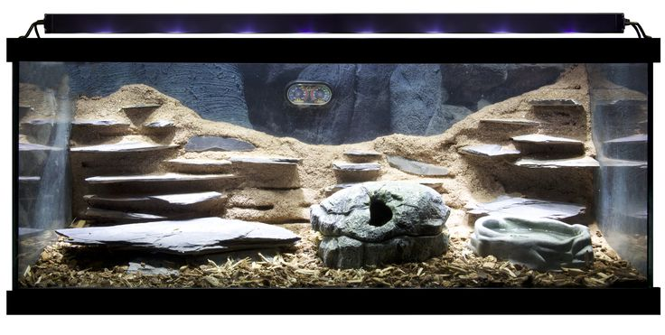 Zoo Med Habitat With Excavator 174 Clay Burrowing Substrate