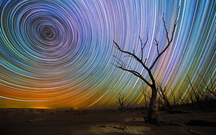 A long exposure photograph showing star trails taken at Mokoan, Victoria in Australia by photographer Lincoln Harrison http://www.telegraph.co.uk/news/picturegalleries/picturesoftheday/11436362/Pictures-of-the-day-26-February-2015.html?frame=3212491