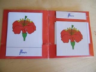 3-part card display folder