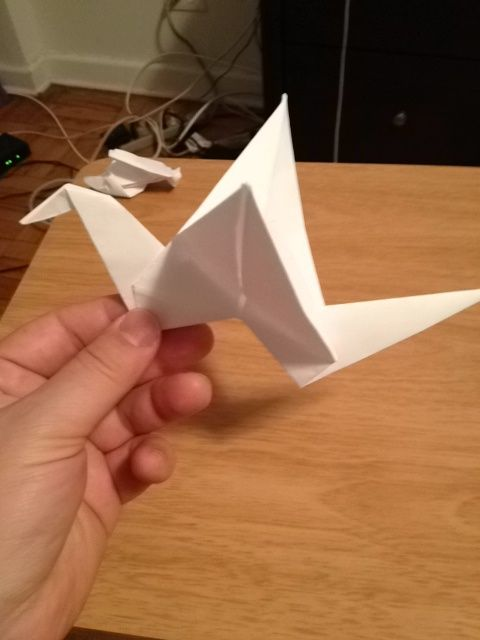 Fold one side down as the head.  Press wings down .  Hold it by the fold in the neck.