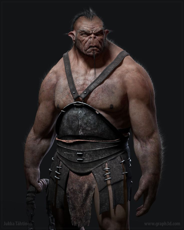 Half Orc or Half Ogre?