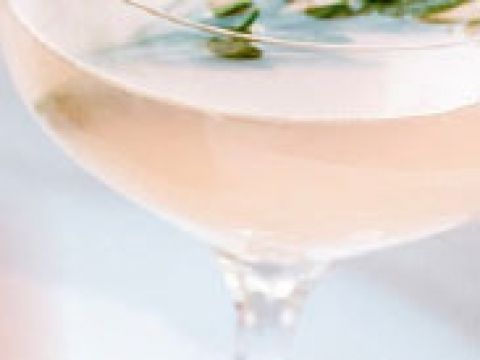 Pompelmoescocktail met gin