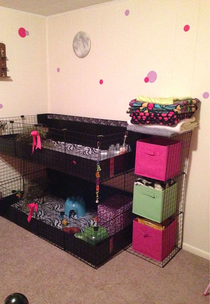 Zebra themed c c cage with side storage compartments pet for Guinea pig cage made from bookshelf