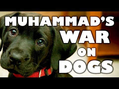 Islamic Republic of Pakistan Engages in a '..Canine Cleansing..' of Man's Best Friend | sharia unveiled