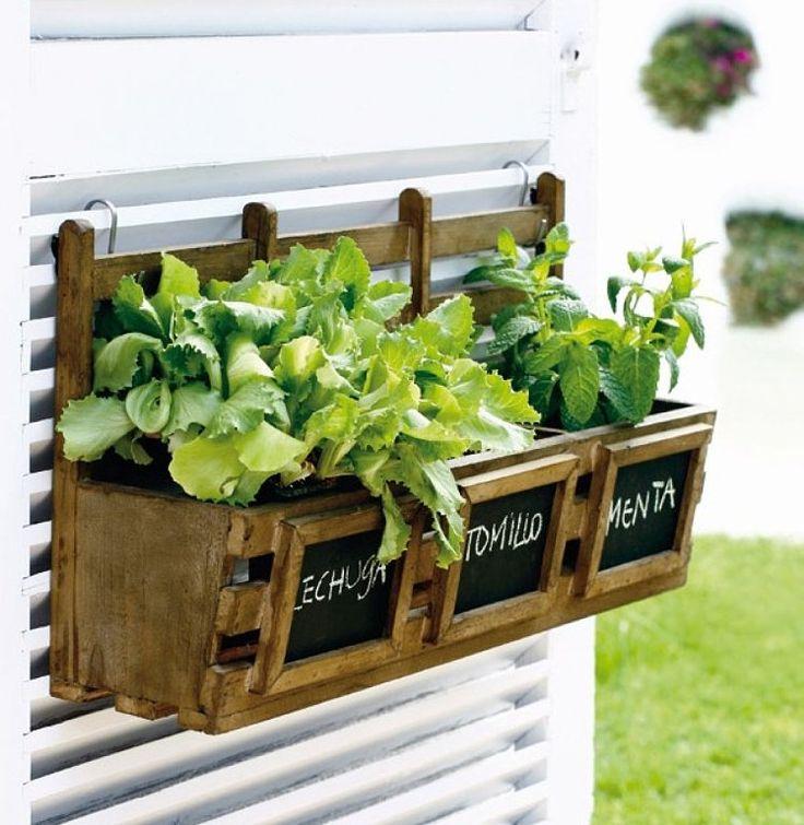 Huertas caseras y jardines verticales!