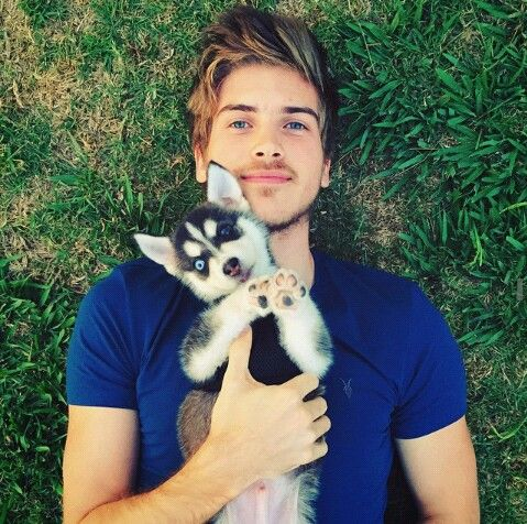 Wolfie Joey Graceffa S Dog