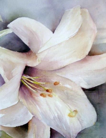 watercolor lily