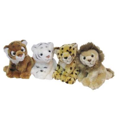 Lion cub royale