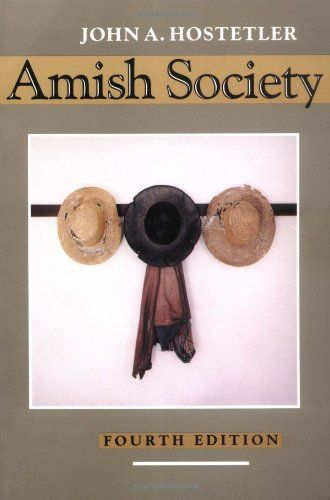 comparing amish and north american society 1736- detweiler and sieber families arrive in north america, start amish settlements in northkill a growing fascination with the amish in american society.