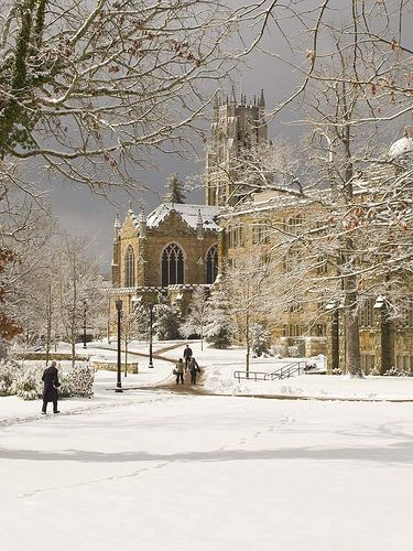Sewanee in the Snow (image from Sewanee Flickr)