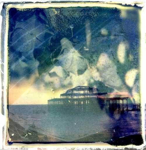 "Film Photography Submission By:  Laura Su Bischoff         Shot with a Polaroid SX-70 and The Impossible Project Color film at Brighton Beach West Pier and ""doubled"" with flower pedals. Emulsion lift combined with TIP transparency technique on watercolour paper."