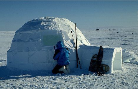Egloos (or Iglu) are snow houses used by the Inuit (Eskimos) of northern Canada. Not all Inuit people used igloos -- some built sod houses instead, using whale bones instead of wooden poles for a frame. Like a sod house, the igloo is dome-shaped and slightly excavated, but it is built from the snow, with large blocks of ice set in a spiral pattern and packed with snow to form the dome.