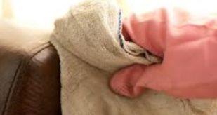 nos solutions pour enlever du moisi sur du cuir