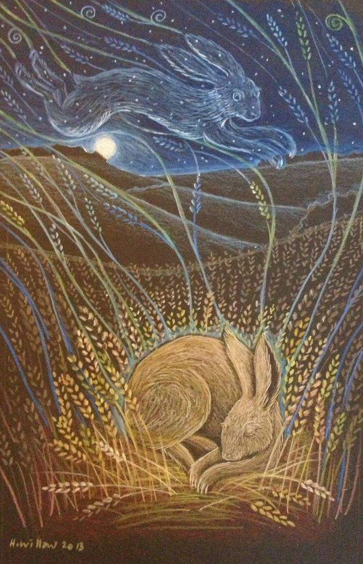 The Hare's Dream: Hannah Willow      reminds me of Watership Down