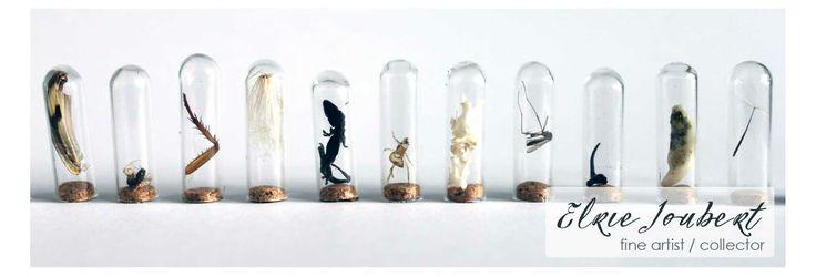 Elrie Joubert fine Artist / collector