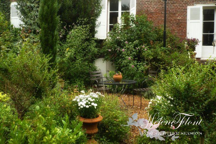127 best 4 saisons dans mon jardin images on pinterest for Jardin 4 saisons albi