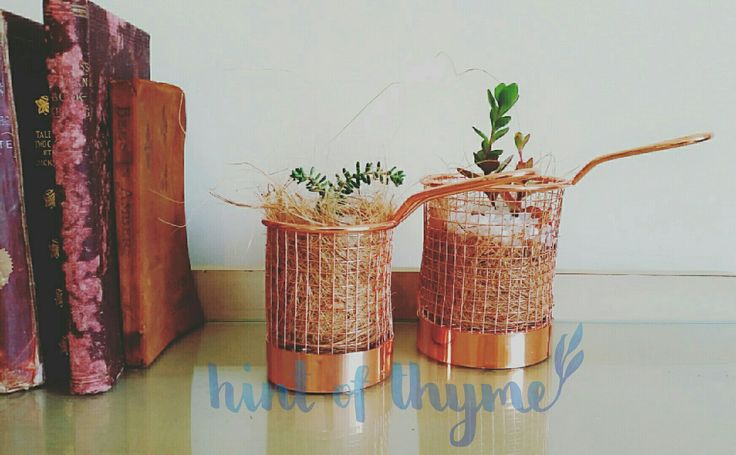 How adorable are these mini copper pots with succulent gardens?! I'm in love!!!