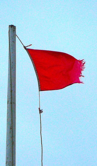 authentic pirate flag