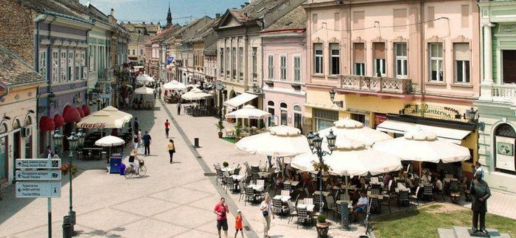 Неделя в Нови-Саде: 5-11 июня