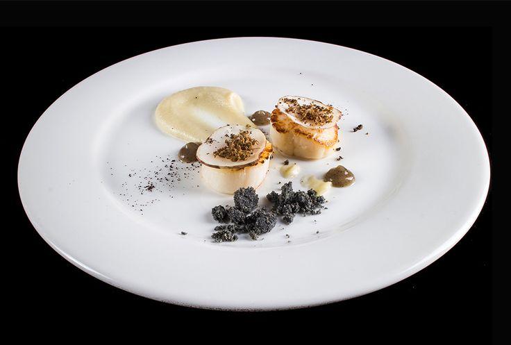 Marco Vegliò   foto Lido Vannucchi   Capesante scottate, crema di topinambur, gel di tartufo e caffè