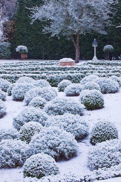 116 best Winter garden images on Pinterest Winter garden