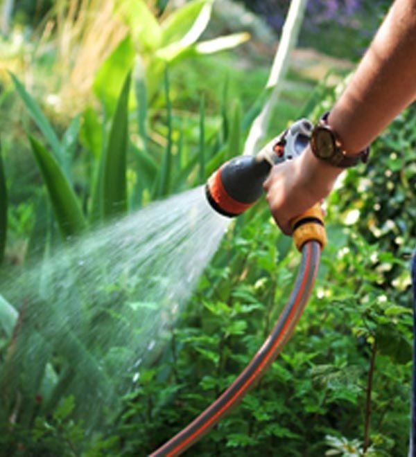 Learn how to cut down on your water bill and save our water resources with these fool-proof tips to water wise gardening.