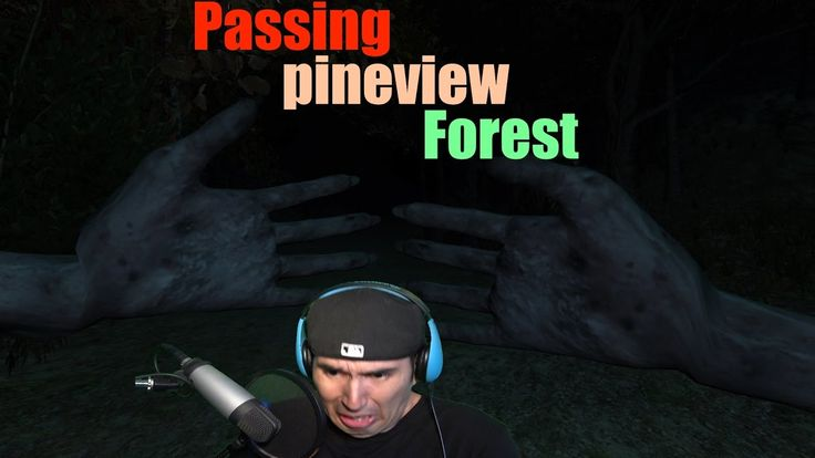 we are trying to make the monster come out, not very smart on my part #game #gaming #youtube #gaming #passing #pineview #forest #scary #game #horror #survival #gameplay #game #play #lets #play #letsplay #jump #scare #fun #funny #dark #creepy #thank #you @youtube @gaming @horror @survival @scary @gameplay @letsplay