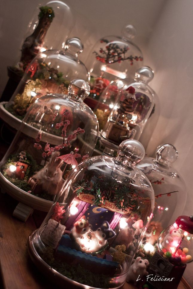1000 Ideas About Bell Jars On Pinterest Glass Domes