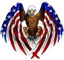 "The Original American Flag Eagle Wings Decal is 5.5"" in size. Free Shipping from the United States"