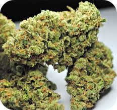 Joint Cannabis Dispensary is a Fast, Friendly, Discrete, Reliable cannabis online shop which ships top grade bud around the world. Buy marijuana Online USA and Buy marijuana online UK or general Buying marijuana online has been distinguished bythe superior quality of our products and by our overall focus on wellness and wide variety of strains for recreational use.Buy  Order weed online. Go to ... https://www.jointcannabisdispensary.com Text or call +1(408)909-1859.