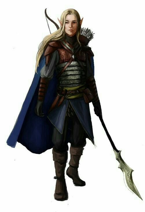 Elf Fighter Soldier - Pathfinder PFRPG DND D&D d20 fantasy