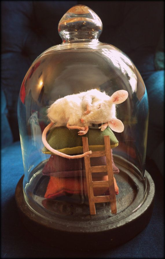 Glass dome containing three hand-stitched cushions, handmade wooden ladder, and a very sleepy handmade faux-fur stuffed mouse, with leather paws and
