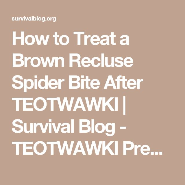 How to Treat a Brown Recluse Spider Bite After TEOTWAWKI | Survival Blog - TEOTWAWKI Preparedness