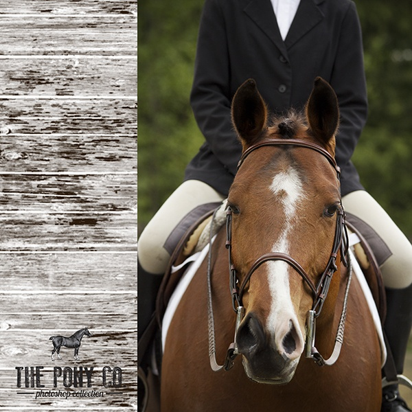 The Pony Co. Design Action Set for Photoshop