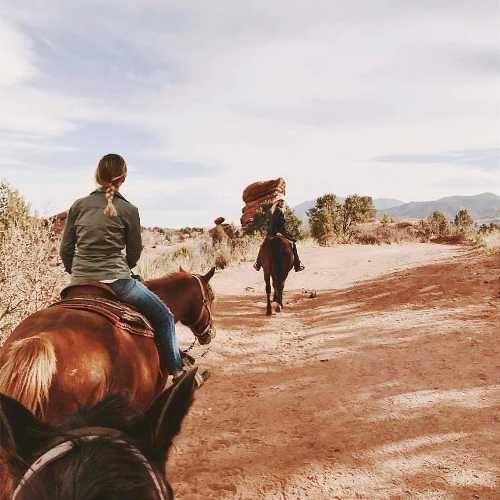 103 Best Colorado Horseback Riding Images On Pinterest Equestrian Horseback Riding And Aspen