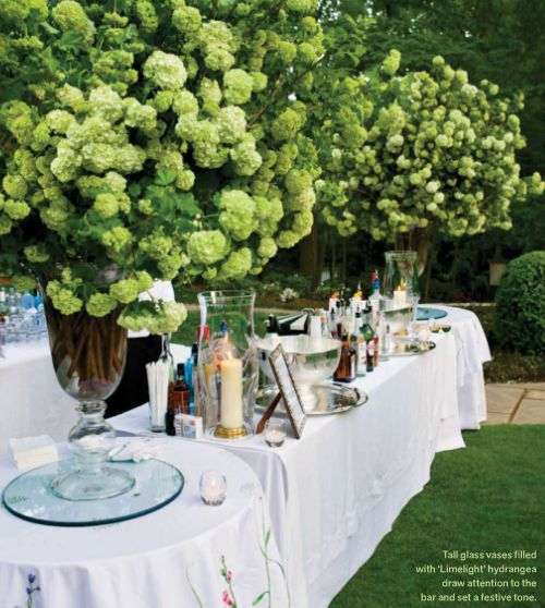 <3 ADD diy www.customweddingprintables.com <3 ...limelight hydrangea (but it looks like viburnum!)