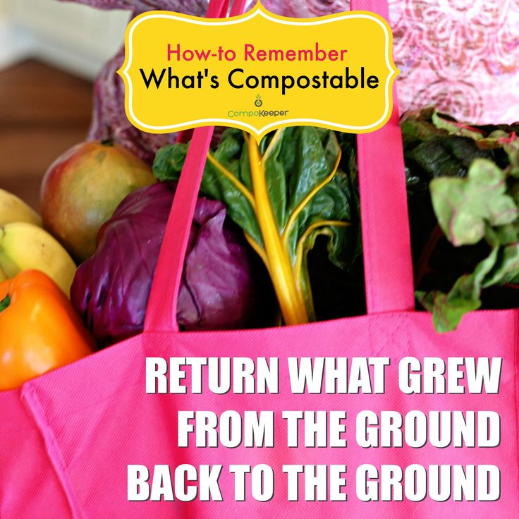 a good rule of thumb when remember what is compostable compost foodscraps