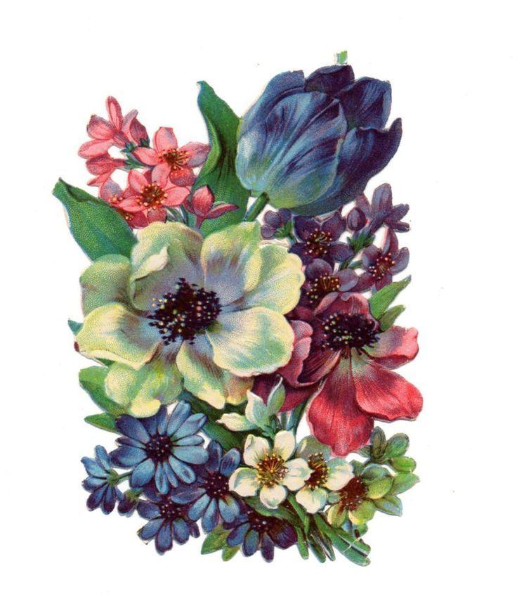 Frühlingsstrauß 187 best ᐯiᑎtᗩge ᗪᖇᗩᗯiᑎgᔕ images on floral