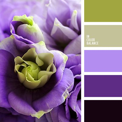 Purple Color Schemes 837 best color scheme - with purple/lavender images on pinterest